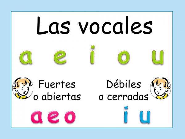 Diferencia Entre Vocales Abiertas Y Vocales Cerradas Solución