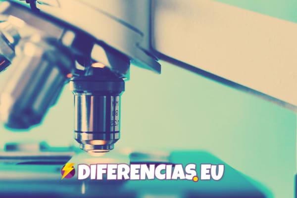 Diferencias Método y Técnica